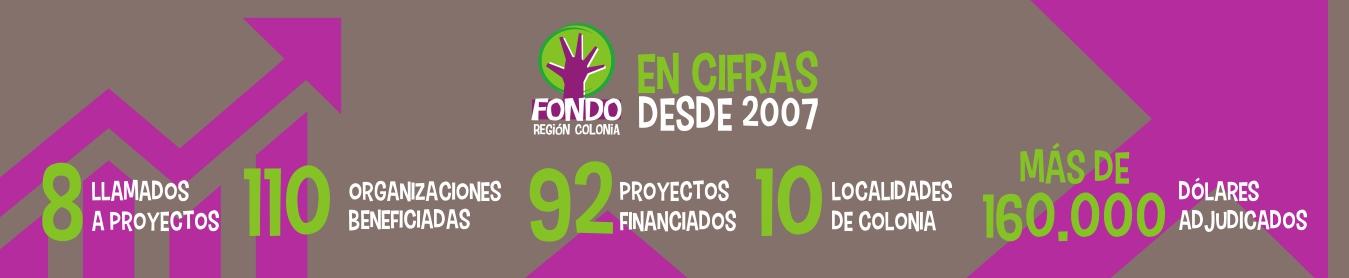 FRC EN CIFRAS2020